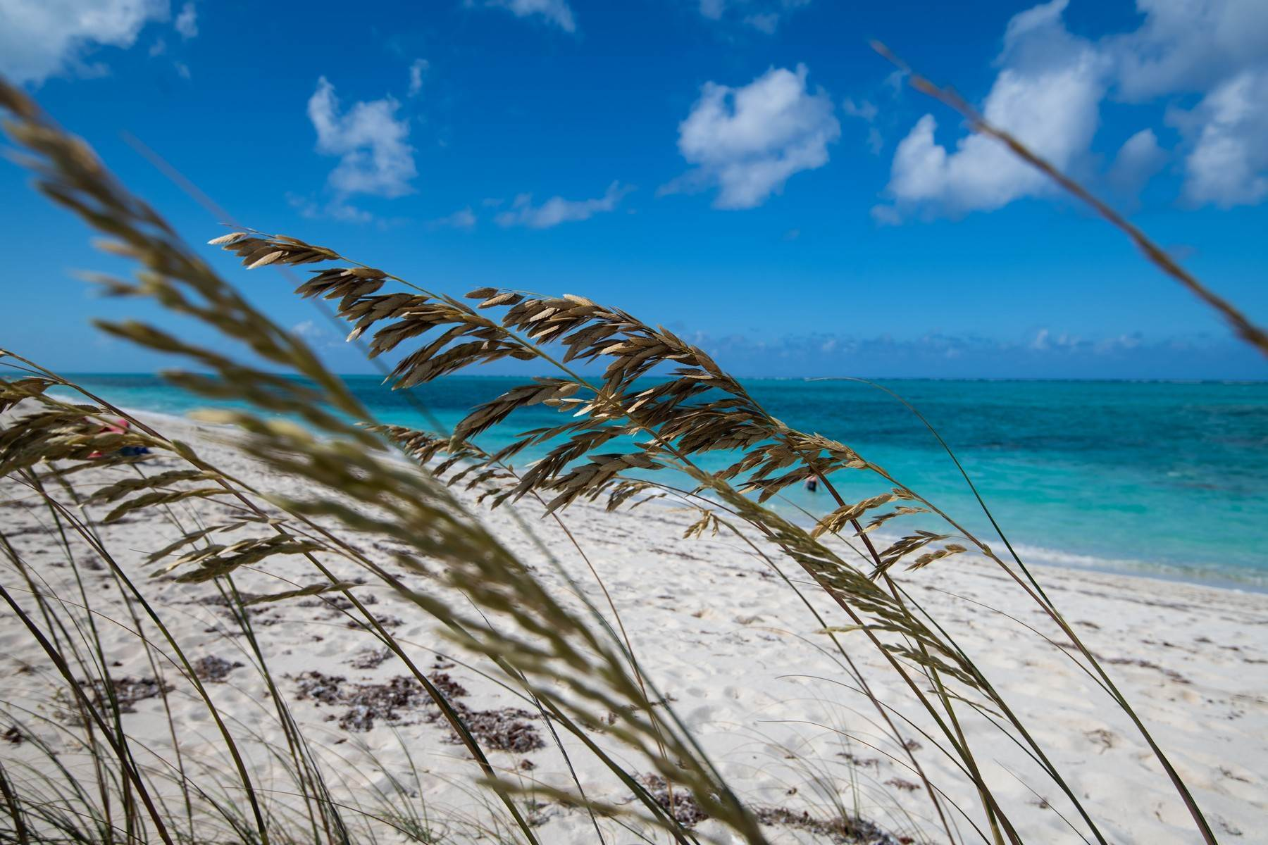 18. Land for Sale at Donkey Lane Estate land Richmond Hill, Providenciales Turks And Caicos Islands