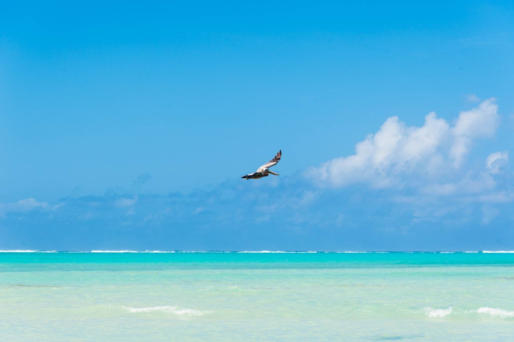 4. Land for Sale at Bambarra Beach West Lots 47,48,56,57,58,66,67,68 Bambarra, Middle Caicos Turks And Caicos Islands