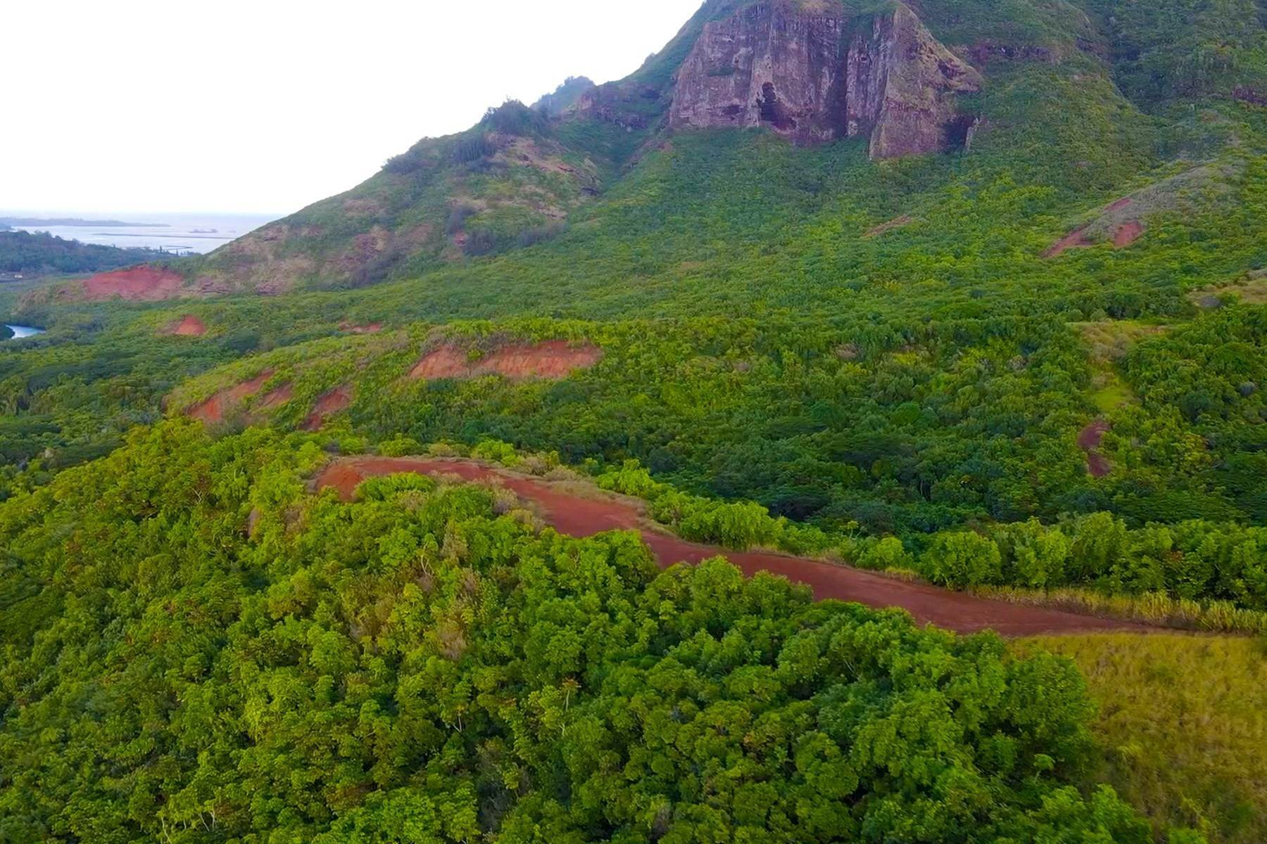 15. Land for Sale at The Headlands of Kalanipu'u Niumalu Lihue, Hawaii 96766 United States