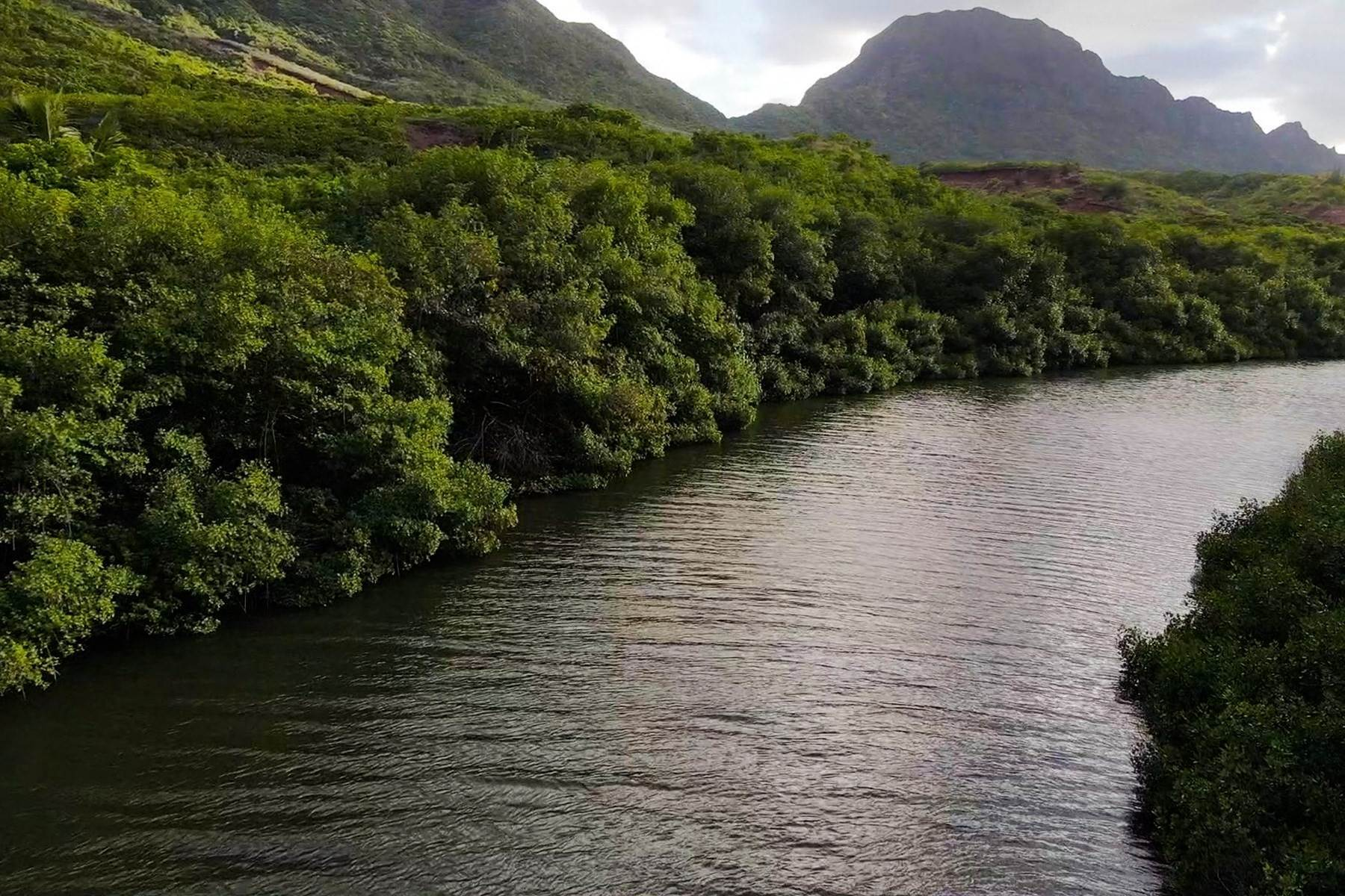 14. Land for Sale at The Headlands of Kalanipu'u Niumalu Lihue, Hawaii 96766 United States